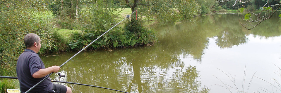 Fishing Lakes and Camping, Carmarthen, South West Wales